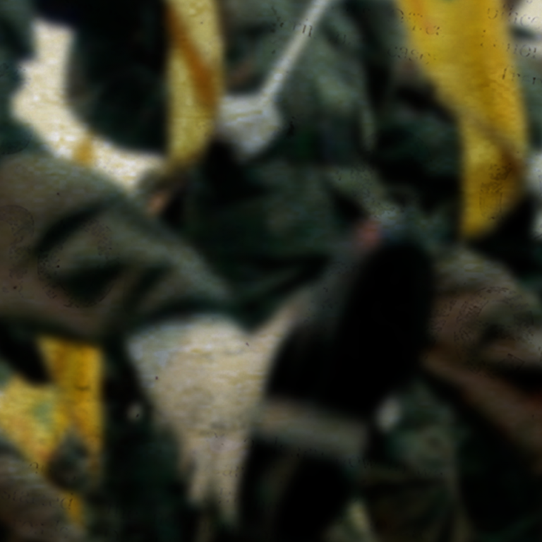 Blurred photo of a Hezbollah flag
